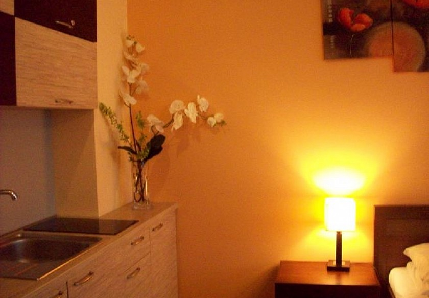 Apartament w Arka Medical Spa**** 8