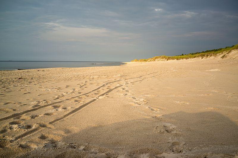 Widok na plażę, Kopalino, Plaża w Kopalinie