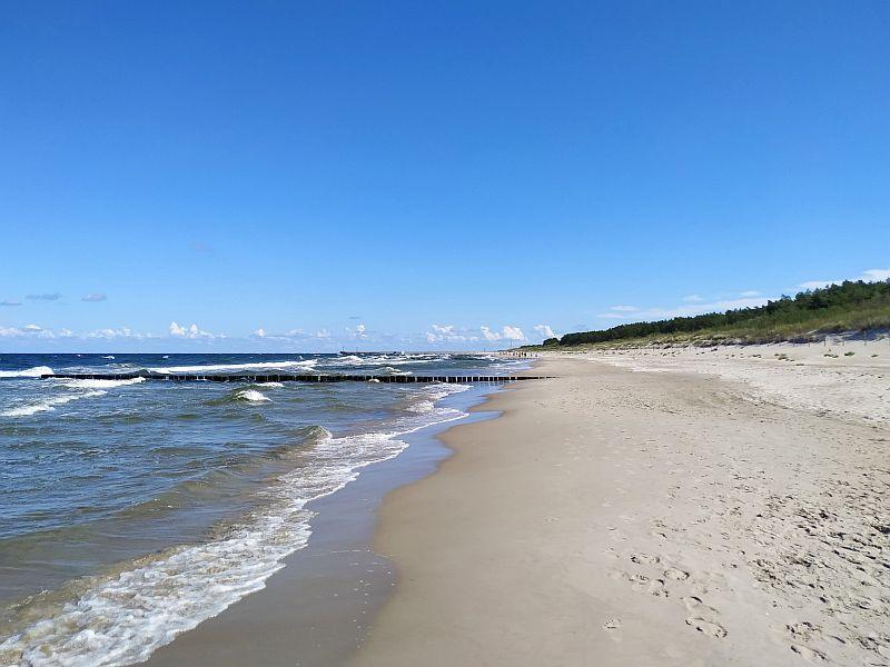 Plaża nad Bałtykiem, wakacje nad Bałtykiem, piasek morze las