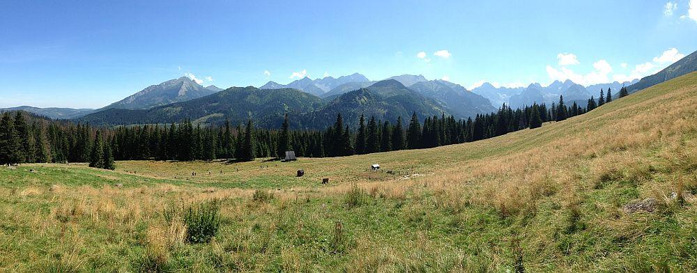 Rusinowa Polana. Polana w tatrach, górska Polana, szlak dla dzieci, łatwy szlak w Tatrach