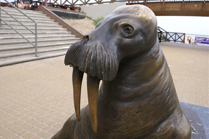Pomnik Morsa w Mielnie