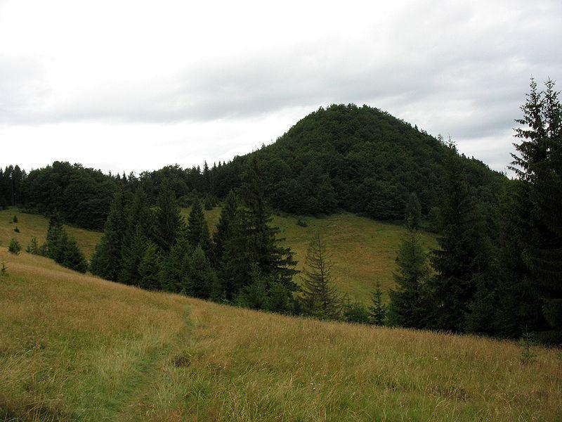 Rezerwat Zielone Skałki